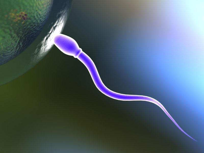 Esperma amarelo